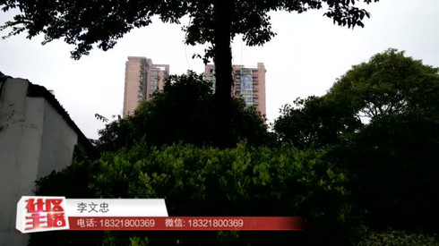 Q房网 李文忠为您介绍观澜郡亭